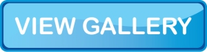 View Gallery Button